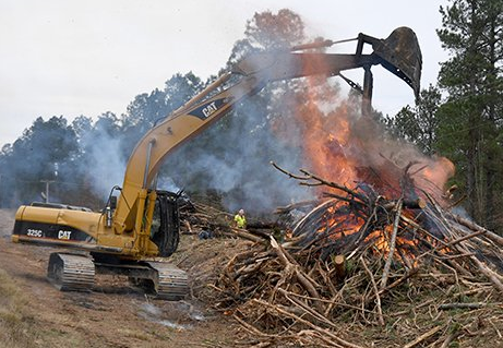 burning piles of cleared timber