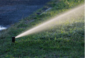 irrigation sprinkler watering the grass